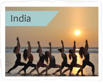 Yoga Teacher Training in Goa India