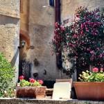 casperia-italy-flowers