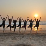 tree-pose-yoga-teacher-training-in-goa-india