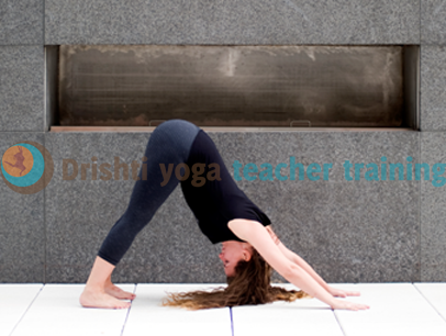 Downward Facing Dog Yoga Pose Adjustments – Adho Mukha Svanasana