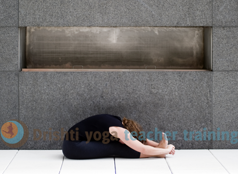 Seated Forward Fold Yoga Pose Adjustments- Paschimottanasana