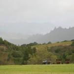 Mayacamas Ranch life