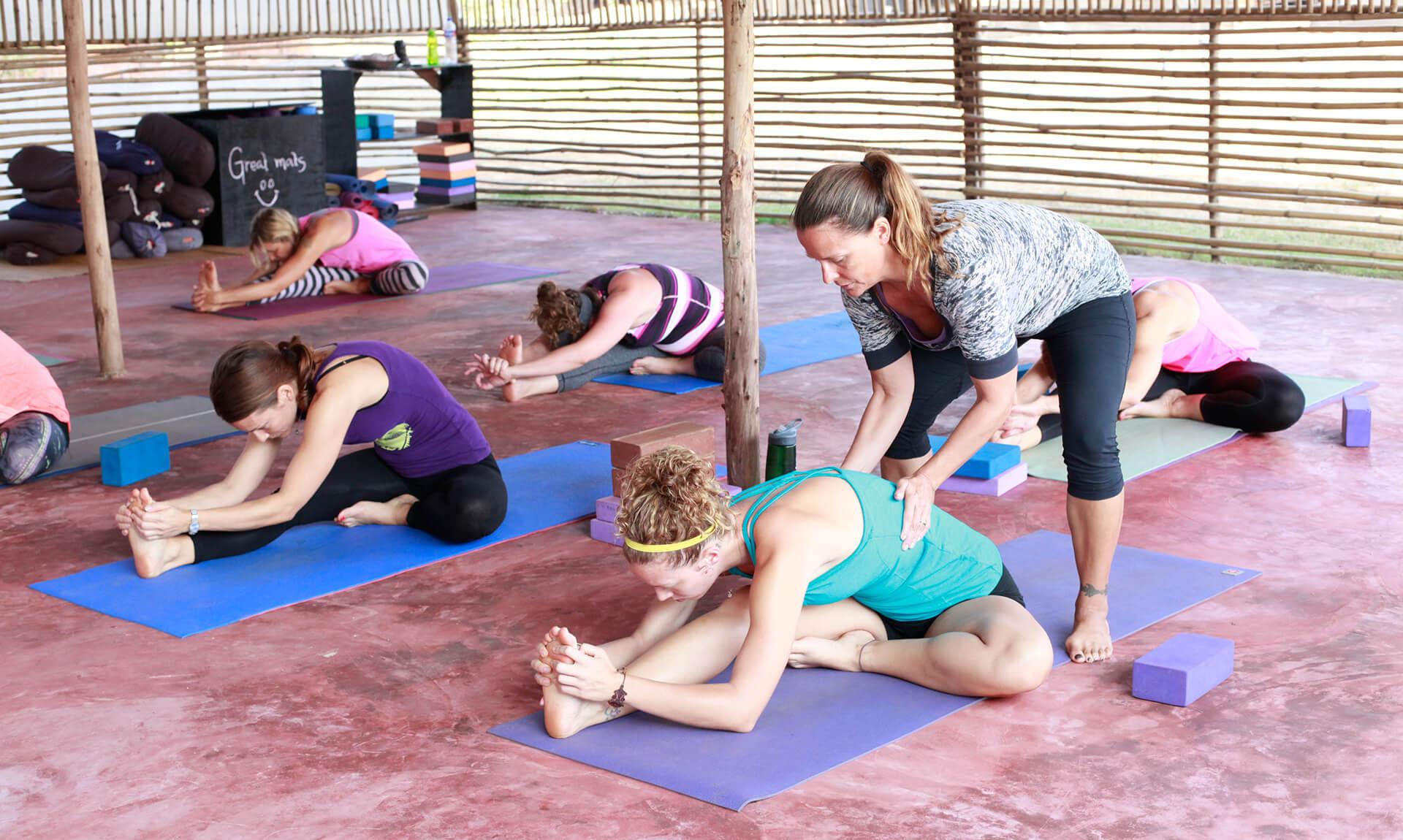 Online Yoga Teacher Training Adjustments